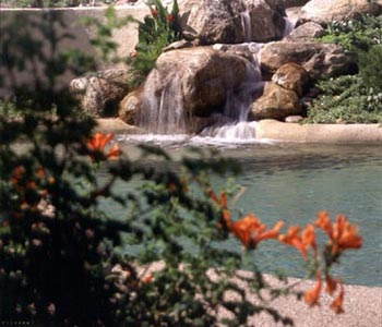Carl Ragels Natural Pools and Gardens Water Features