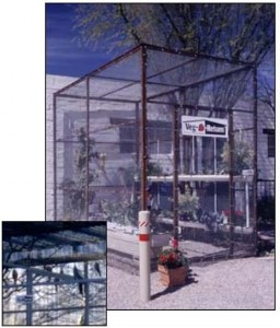 Garden hydroponics in Tucson