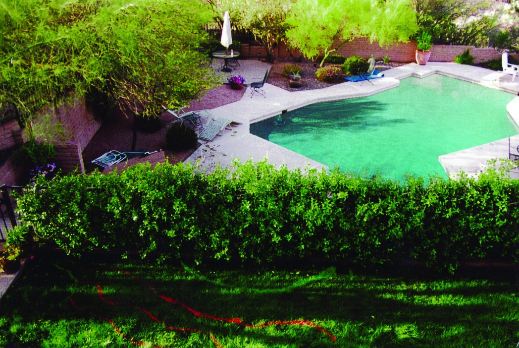 Essential pool safety tips for parents pools ponds and for Az pond and pool